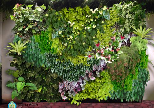 Vertical Garden Project
